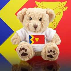 Birmingham Teddy Bear
